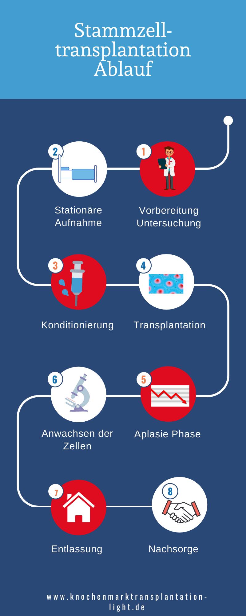 Ablauf Stammzelltransplantation