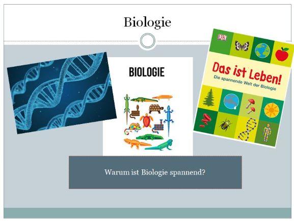 Biologie Einführung